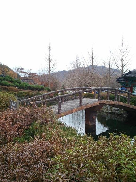 4Korea, footbridge, Luda Egbalic FB.jpg